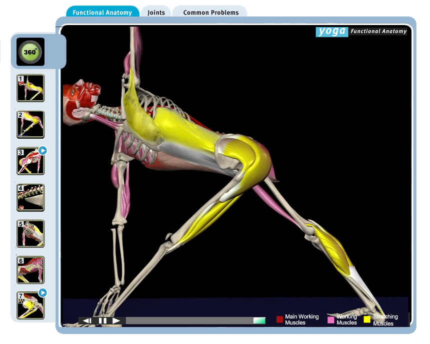 Yoga Functional Anatomy Software Giveaway! - Kristin McGee