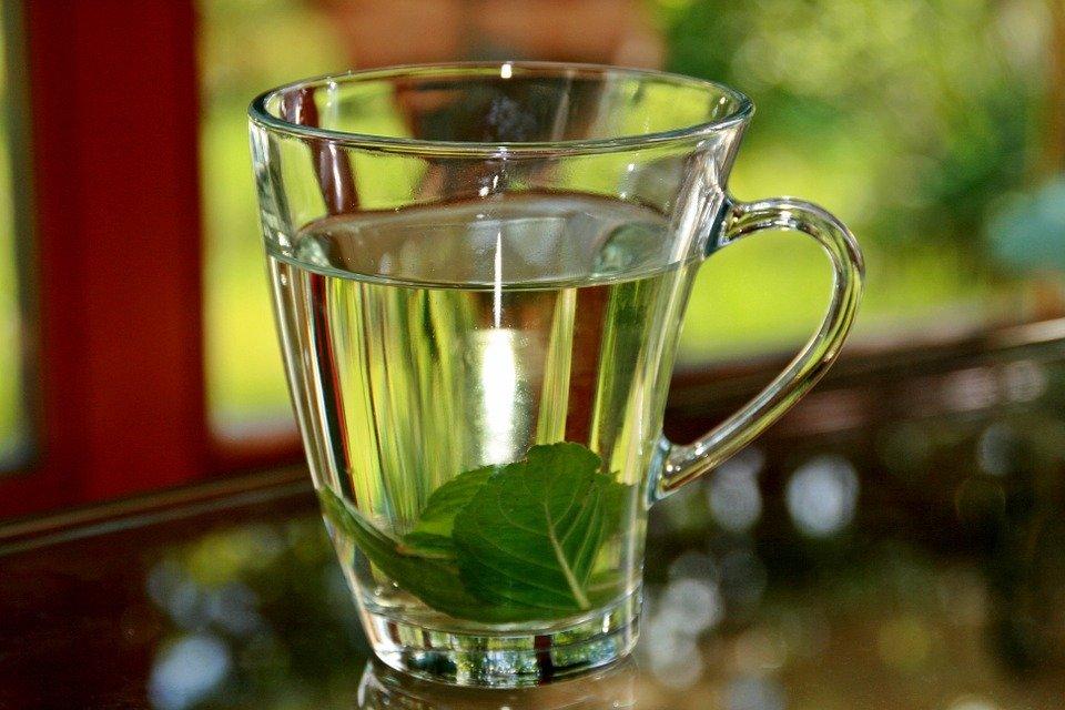 peppermint-tea-352334_960_720